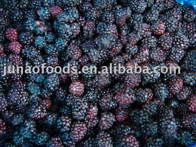 IQF fruits manufacturer frozen wild blackberries