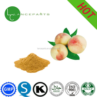food and drinks additive peach juice herbal fruit powder