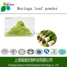 GMP top quality Moringa leaf powder