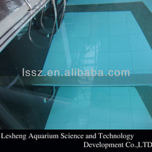 100% Lucite virgin material clear acrylic swimming pool