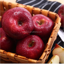 2018 red huaniu fruit market prices apple