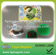 Educational Ferrite Magnets with design box