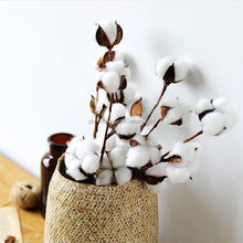 Top Selling Product Dry Cotton Flower With Artificial Stem Wholesale From China