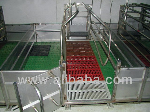 Sow farrowing cage in stainless steel Gabbia parto per scrofa in acciaio inox made in Italy