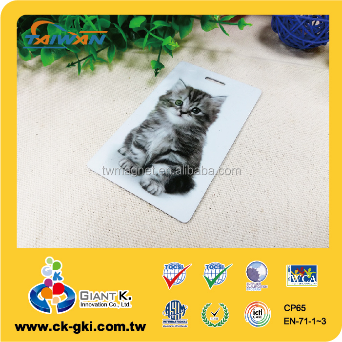 Eco-friendly picture pvc plastic tabby luggage tag
