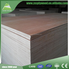 3mm to 25mm poplar plywood with great price