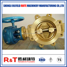 Oil & Gas butterfly valve renewable seat ring
