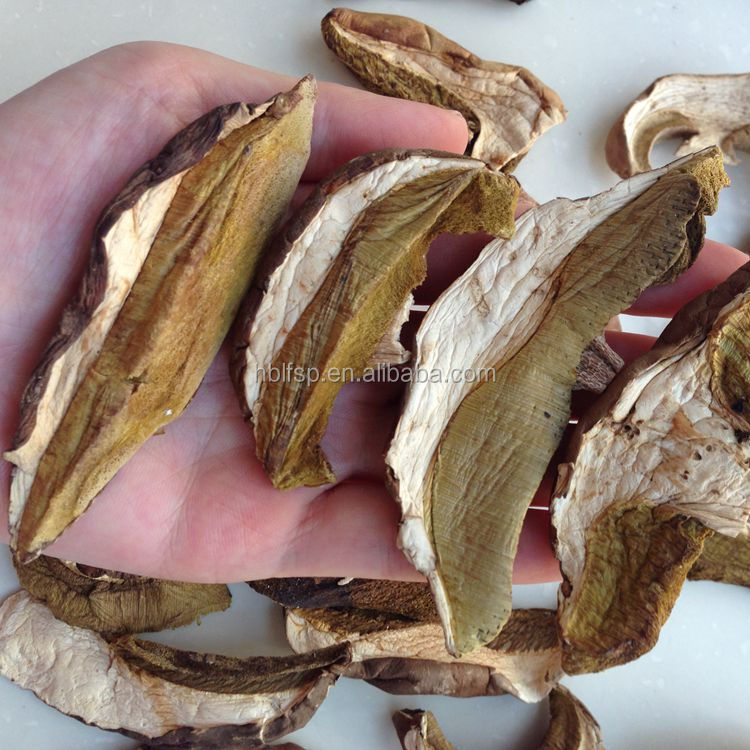 Chinese Dried Funghi Porcini Mushroom Slices from Fresh Boletus