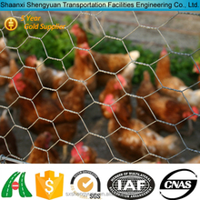 Galvanized chicken coop hexagonal wire mesh netting