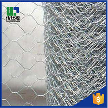 chicken wire fencing for dogs/hexagonal wire mesh/mesh sheet