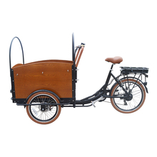 Three Wheel 6 Speed Rickshaw Driving Type Adult Cargo Tricycle Family Bike