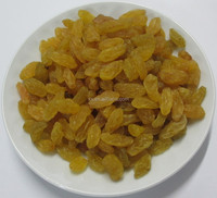golden raisins grapes