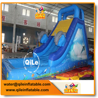 hot sale outdoor amusement inflatable dolphin water slide for kids and adults