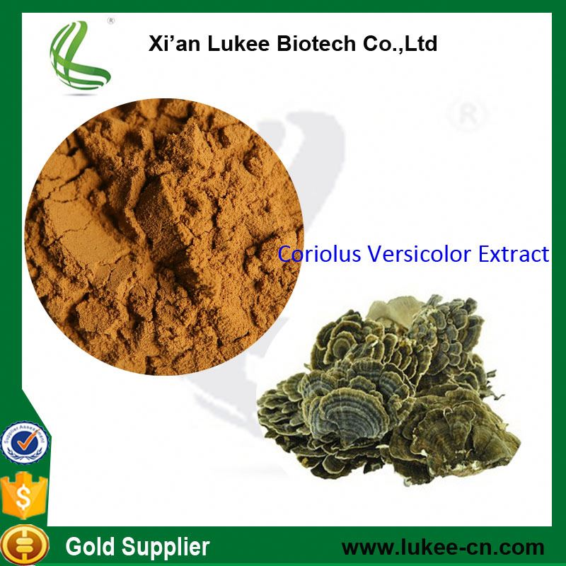 Functional Food And Food Additive Coriolus versicolor polysaccharide