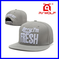 RZWOLF factory 3d logo custom plastic import snap back hats