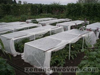Growing and Plant Cover non woven fabric
