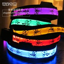 LED Flashing pet Collar