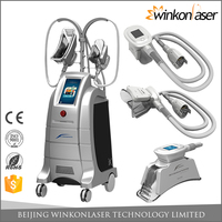 Vertical style CE / FDA 4 different size handles Max -9 Celsius cryo cryolipolysis body slimming machine for weight loss