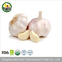 Buy Direct From China Manufacturer Spice Freeze Dried Garlic FD Garlic Price