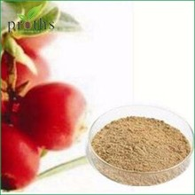 ISO Manufacturer Organic Camu Camu fruit extract powder