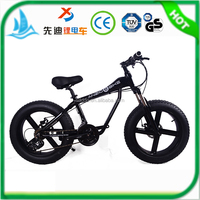 "Hot Selling New Arrivel 20"" Fat Beach Bicycle / Snow Bike with Fat Tire and 24 speed"
