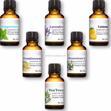 Therapeutic Grade Aromatherapy Oil Gift Set With Lavender, Frankincense, Peppermint, Lemon, Tea Tree & Rosemary Oils