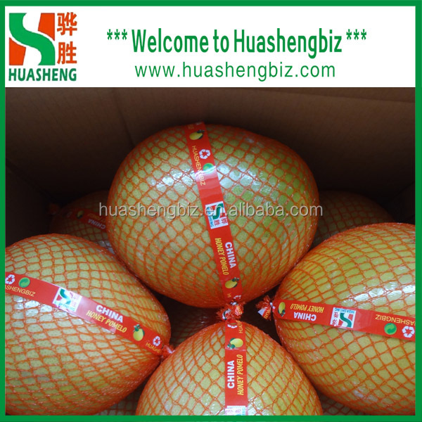 guanxi honey pomelo for export
