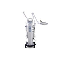 New Hottest!!! Multi-function Beauty Equipment for acial care, facial beauty and facial cleaning