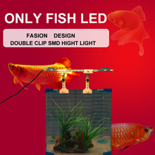 The latest inventions 10W 21CM White Blue Arowana Fish Light With Clip