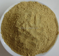chinese mature ginger powder