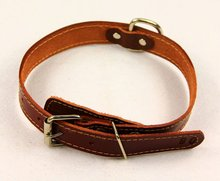 cheap dog collar real leather / genuine leather dog collar