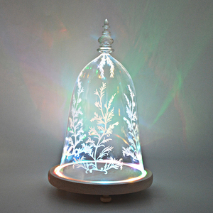 Glass Dome Beauty and the Beast with Inside Lights with Wood Base