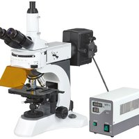 N 800F Laboratory Biological Fluorescent Microscope