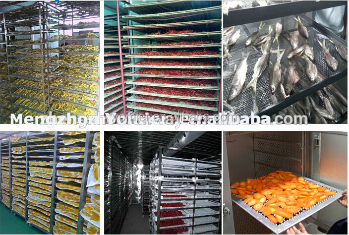 Different Capacity Food Fruit Dehydrator Machinery/Dried Green Onion Dehydrator