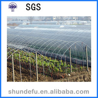 Cheap Price Single Span Agriculture Greenhouse