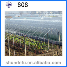 Cheap price Single-Span Agriculture Greenhouse structure for sale