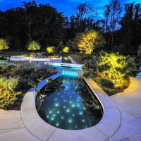 colourful waterproof 45w Pool Star Lights / Fiber Optic Pool Lights