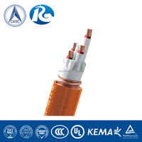 Fire Resistant XLPE insulation Flame Retardant sheath Power cable