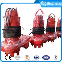 Small electric motor water trash pump
