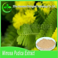 100% natural organic Sensitive Plant root bark powder wholesale