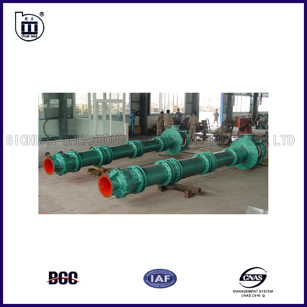 Sewage Irrigation Water Vertical Pump
