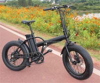 New Chopper 48V shenzhen electric bicycle with CE certificate
