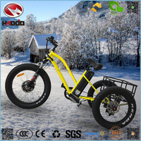 Alloy frame 500w three wheel motorcycle electric tricycle kit