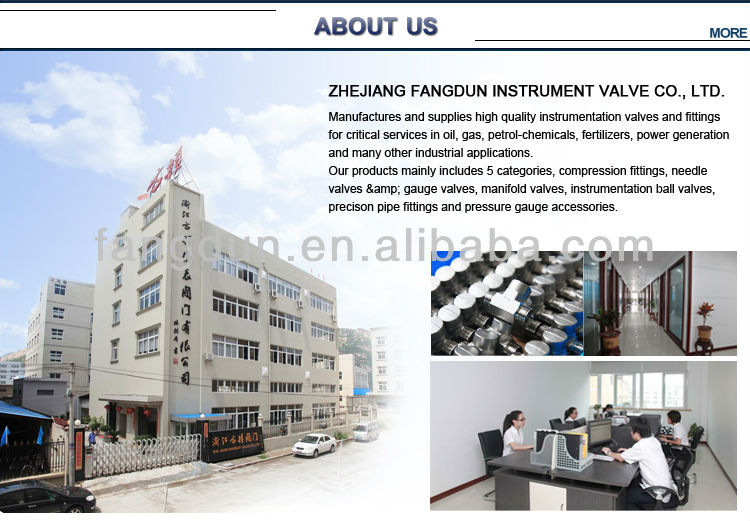 Modern Design High Pressure Ball Valve,Instrumentation Ball Valve