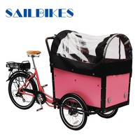 Cargo Electric Three Whees Bike for Carring Goods