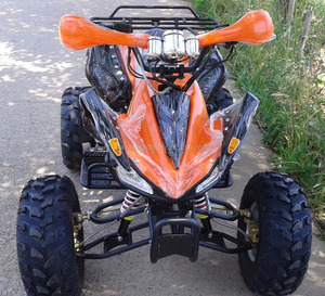Cheap 110cc Gasoline ATV Quad for Sale