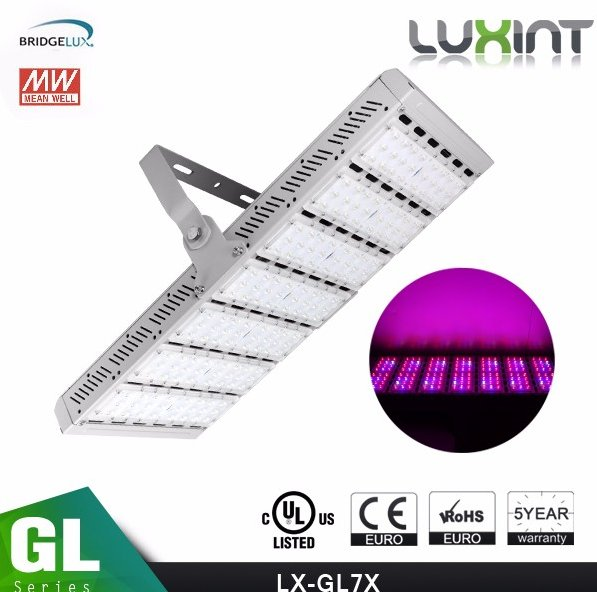 3W 5W Chip 300W 600W LED Grow Light WIth Veg And Flowering Modes led light grow For Medical Plant