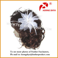 Decorate Feather Headpieces
