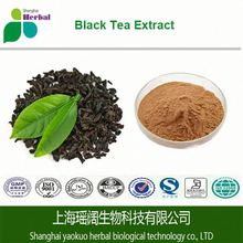 100%Water-soluble Tea Polyphenol Tea Extract / Black Tea Extract l-theanine / Tea Extract Powder l theanine