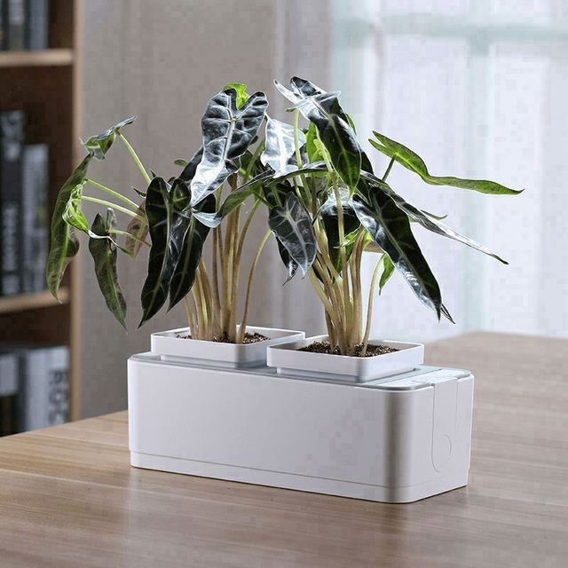 corrugated flower pot